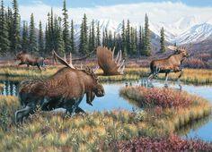 Moose Travels by Jim Kasper