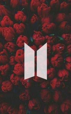 Novo logo ♡