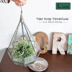 瓶の中の小さな世界!多肉植物や苔を使ったテラリウムの作り方 | VERANDAHER|モノトーン素材とインテリア雑貨