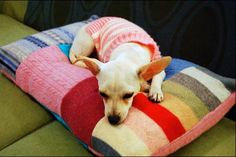 Since pets are often an important part of the household, here is a great way to use old sweaters.