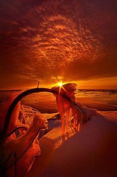 Güneş âdildir; herkese doğar: Yoksullara, yalnızlara, kalabalıklara, çıplaklara…  Sen asıl güneş ışıklarının değdiği yerlere bak: Onlarla yüzleşebiliyor musun? (MK)