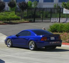 Sonic Blue Mustang Cobra Terminator...I will own one of these one day. No doubt