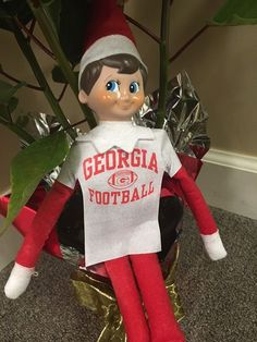 """""""Today I learned about the world of UGA Football. One of our Superintendents Joe Reed gave me a few pointers on the game explained what it means to be a Dawg and even got me this cool shirt to remember him by!"""" - Joe the Elf  #jaketheelf #elfontheshelf #holidays #officefun #godawgs #iveyhomes Ivey Homes is an award-winning locally owned Augusta GA homebuilder. Homes from the Low $100's to Custom."""