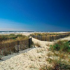 The Cove Beach, Cape May, New Jersey. Coastalliving.com