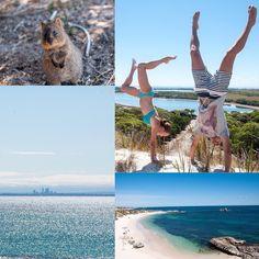 Daytrip to Rottnest Island  #rottnestisland #bluewater #beach #handstand #quokka #sun #sunburn #australiaday by tara_liecke http://ift.tt/1L5GqLp