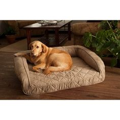 Buddy Beds Bolster Bed  Large  Taupe Microfiber * Continue to the product at the image link.