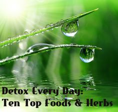 Detox without dieting by using these top ten foods and herbs.
