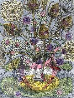 The Gardener's Arms - Angie Lewin - linocut print Scottish Flowers, Angie Lewin, Wood Engraving, Linocut Prints, Art Prints, Screen Printing, Art Drawings, Contemporary Art, Street Art