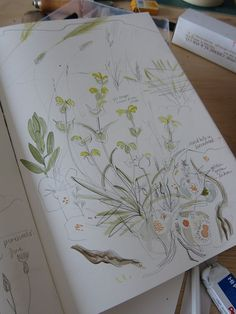 Another sketchbook page | Flickr - Photo Sharing! Angie Lewin