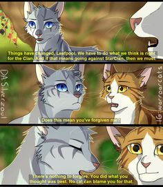 Jayfeather to Leafpool in the third Warriors series Warrior Cats Quotes, Warrior Cats Funny, Warrior Cats Comics, Warrior Cats Fan Art, Warrior Cats Series, Warrior Cats Books, Warrior Cat Drawings, Cat Comics, My Heart It