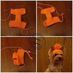 Dog Clothes with Sleeves Dog Clothes Birthday Girl . : Dog clothes with sleeves dog clothes birthday boy … Crochet Dog Clothes, Crochet Dog Sweater, Pet Clothes, Dog Clothing, Crochet Jacket, Dog Clothes Patterns, Dog Pattern, Dog Sweaters, Dog Dresses