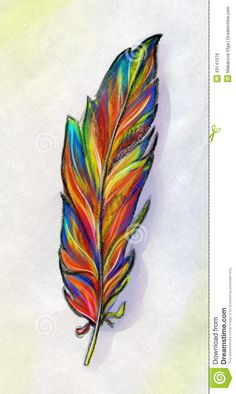 feather drawing color - Google Search