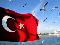 Flying the Turkish flag. Inferno Dan Brown, Turkey Flag, Eminem, Culture, In This Moment, Image, Beautiful, Istanbul Turkey, Google