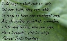 szabadság Jena, Life Quotes, Wisdom, Math Equations, Messages, Poet, Words, Inspiration, Google