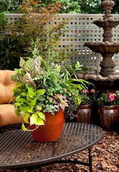 Be Fresh / Armstrong Garden Centers