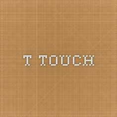 T-Touch