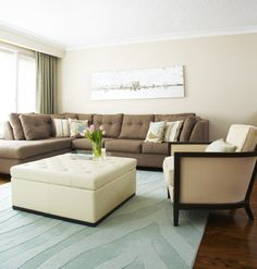 Modern Apartment Residing Area Decorating Tips With Great Colour Scheme Types | Decoration Ideas