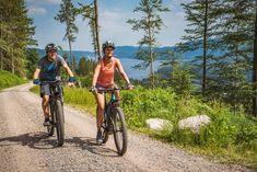 Mountainbike Touren im Schwarzwald | MTB Touren Finder E Mtb, S Bahn, Der Bus, Bicycle, Bike, Bicycle Kick, Trial Bike, Bicycles