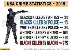usa-crime-statistics-blacks-killed-by-blacks-blacks-killed-by-the-police.jpg 735×510 pixels