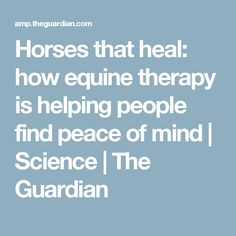 Horses that heal: how equine therapy is helping people find peace of mind | Science | The Guardian