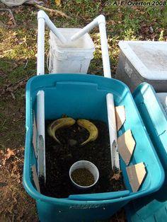 DIY Black Soldier Fly Larvae Harvesting Bin