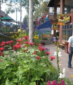 The Winter Park area has over 45 unique shops featuring clothing, art, jewelry, ski wear and outdoor equipment, salon services, hand-crafted furniture, and a wide assortment of gifts and Colorado souvenirs.
