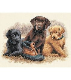 Dimensions Counted Cross Stitch Kit Chew Toy