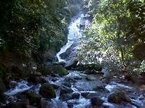 kutralam waterfalls - Yahoo Image Search Results Forest Department, Coimbatore, Tourist Places, Mountain Range, Yahoo Images, Mystic, Image Search, Earth, Ranges