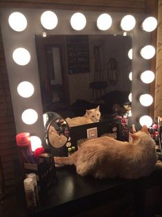 DIY Make-up Mirror With Lights! Here's a fun crafty weekend project for you! If you want a professional makeup mirror, like to DIY and want to save yourself lots of cash. Mirror With Light Bulbs, Diy Vanity Mirror With Lights, Vanity Mirrors, Mirror Ideas, Vanity Ideas, Lighted Makeup Mirror, Vanity Room, Led, Diy Makeup Vanity