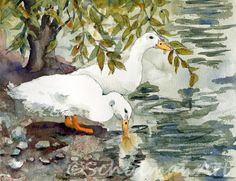 Bird, White Duck Watercolor painting ORIGINAL nursery room, children's room or country kitchen home decor decor, baby gift