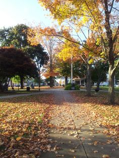 Downtown Foxborough, Massachusetts  Leaves on the common and Bowditch Bandstand.