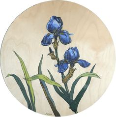 Blue Irises – oil on wood – diameter The Quiet Miracle, Michael Krief Gallery, Solana Beach, California – 12 June to 3 July 2019 – Lizza Littlewort Solana Beach, Irises, June, African, California, Oil, Gallery, Artist, Roof Rack