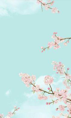 Flower Phone Wallpaper, Phone Screen Wallpaper, Pastel Wallpaper, Cute Wallpaper Backgrounds, Pretty Wallpapers, Flower Backgrounds, Cellphone Wallpaper, Aesthetic Iphone Wallpaper, Cool Wallpaper