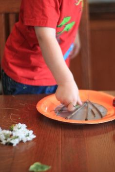 Contact paper makes this an easy craft for toddlers    Click on the image for more Crafts for Kids!