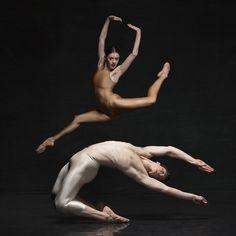 Dance Dialogues 28 August - 5 September  Creative Direction Designfront Photographer Georges Antoni