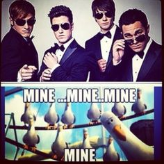 The reaction of every rusher! Carlos Pena Jr, Marvel Avengers Movies, James Maslow, Kendall Schmidt, Big Time Rush, I Can Relate, Cool Bands, Love Of My Life, Fangirl