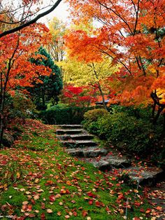 Colors.  Hope I can make my backyard like this someday....