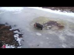 Fails, Movies, Outdoor, Outdoors, Films, Make Mistakes, Cinema, Movie, Outdoor Games