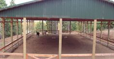 horse riding arena images open | covered arena our 60 x 120 covered arena is open