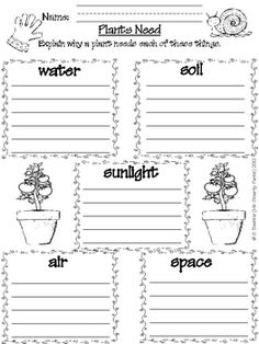 1000 images about 1st grade plant unit on pinterest plants life cycles and plant parts. Black Bedroom Furniture Sets. Home Design Ideas