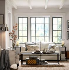 living room inspiration, classic and modern
