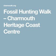 Fossil Hunting Walk – Charmouth Heritage Coast Centre