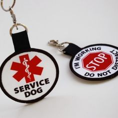 1000 Images About Service Dog On Pinterest Service Dogs
