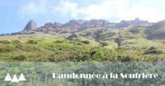 Contrairement à ce que l'on pourrait croire en lisant les précédents articles sur notre voyage en Guadeloupe ( là et là ), on n'a pas ...