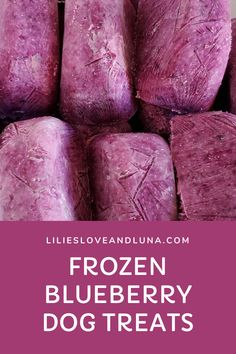 Frozen blueberry dog treats are an easy to make dog treat that is great for a warm summer day.