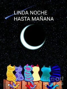 Good Night, Princesa Diana, Movie Posters, Happy, Good Day Quotes, Good Morning Greetings, Good Night Prayer, Good Night Greetings, Wicca Tattoo