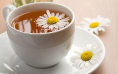 Let us take a look at the amazing health benefits of drinking chamomile tea before bed. Chamomile tea has been used for centuries for its medicinal properties. Home Remedies For Snoring, Natural Home Remedies, Herbal Remedies, Cold Remedies, Chamomile Tea Benefits, Chamomile Oil, Roman Chamomile, Tea Before Bed, Good Foods To Eat