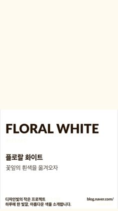 There is power in the simplicity of a white wall and a starchy white can be too much, I love this light egg shell color. Pantone Colour Palettes, Pantone Color, Aesthetic Colors, Beige Aesthetic, Color Patterns, Color Schemes, Off White Color, Beige Color, Colour Pallette