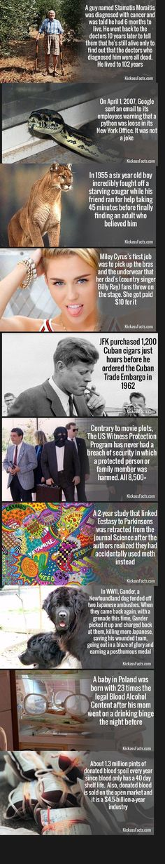 Semi-interesting facts