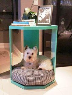 DECORAÇÃO VIVA | Se o seu pet insiste em ficar na sala, essa é uma boa ideia para integrá-lo a mesinha  lateral e dar um charme a mais na decoração, não é? #inspiracao #decoracao #pet #ficaadica #SpenglerDecor